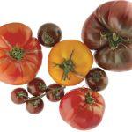 Tomaten Mariniert – Serviert in der Bowl